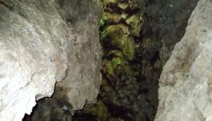 Cueva del Viento, Tenerife