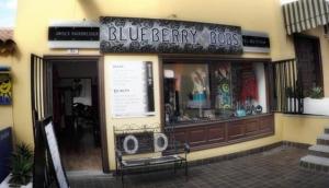 Blueberry Bobs