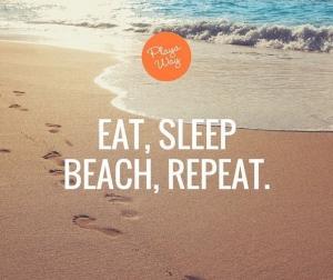 It's the Playa Way