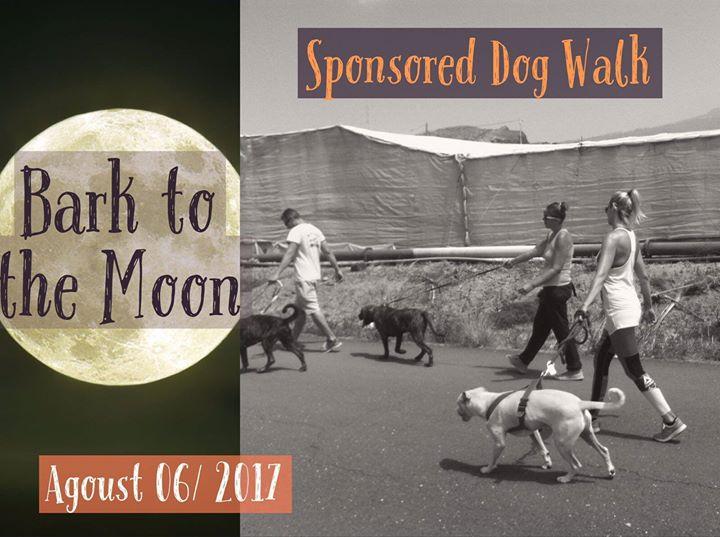 Bark to the Moon Dog Walk. Ladrando a la Luna paseo Perruno