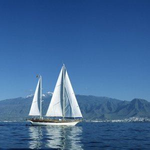 Sailing in Tenerife