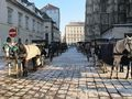 Vienna Horsedrawn Carriages