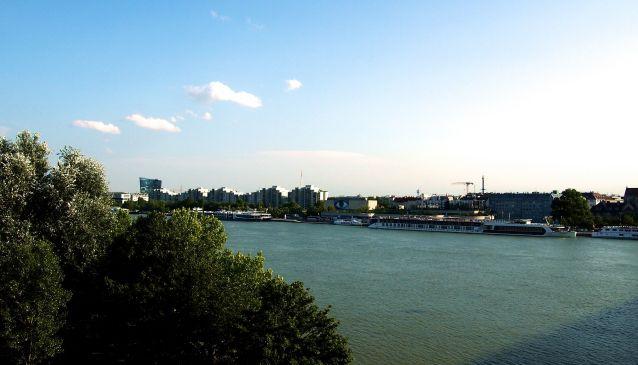 Oh, Viennese Summer...
