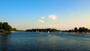 The Danube Island and its Festival