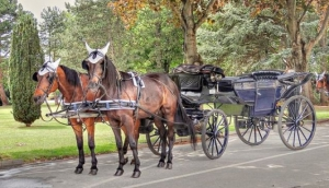 A Carriage Ride through the Cemetery...