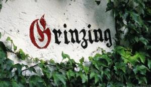 Grinzing - Heurigen, good wine!