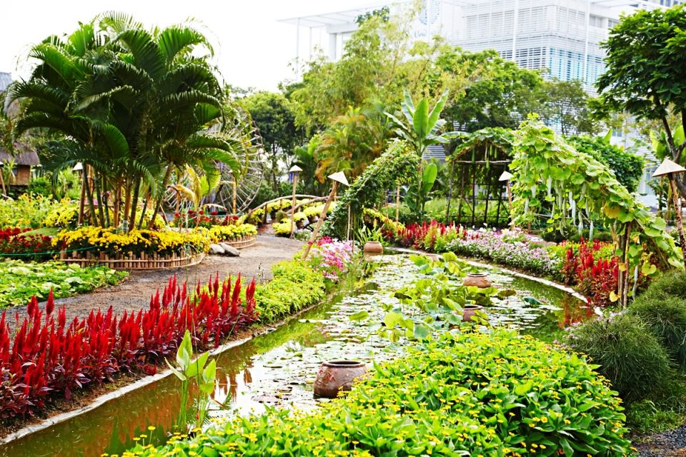 Tet Flowers Garden