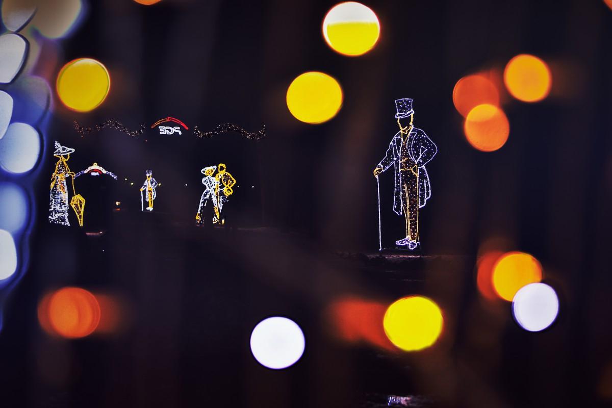 Christmas illuminations in Lazienki Park
