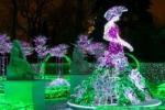 Royal Garden Of Light