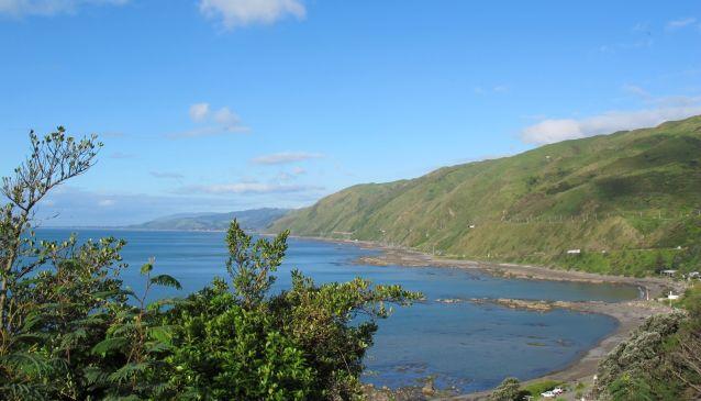 Kick Back and Relax on the Kapiti Coast