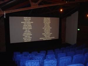 Bergman Screen