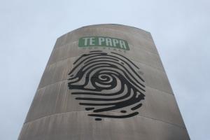 Te Papa Store