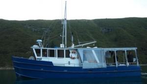 Wellington Fishing Charters