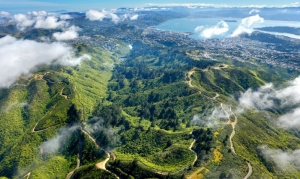 Aerial view of Zealandia © Rob Suisted