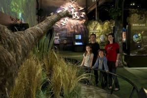 Exhibition - life size moa at Zealandia © Zealandia