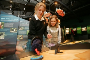 Exhibition - puppet feeding at Zealandia © Zealandia