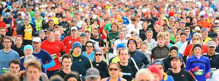 Wellington Marathon 2017
