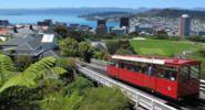 Wellington Video Guides