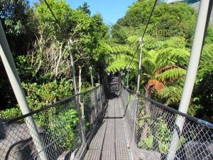 Botanic Gardens Bridge