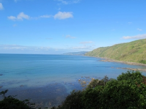 The Kapiti Coast