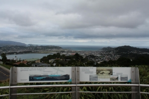 Wellington Airport View, Victoria Peak Lookout