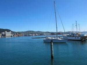 Wellington Harbour Boats