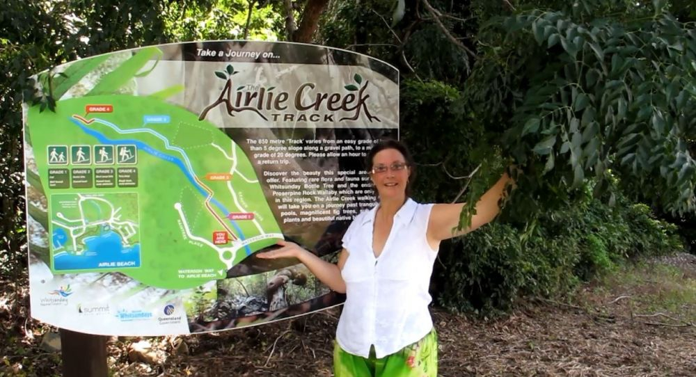 Airlie Beach Creek walking track