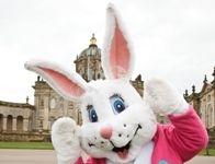 Molly rabbit at Castle Howard