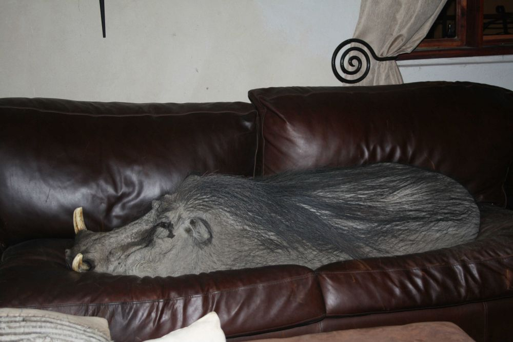 Spike Relaxing