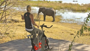 Health Safaris Are All The Rage Now