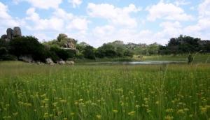 Of Spirits and Stones: The Matobo Hills