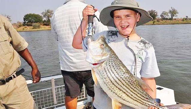 Tiger Fishing Time