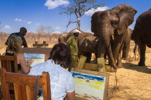 Elephant Art Experience