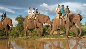 Shearwater Elephant Back Safaris