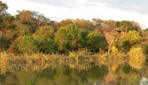 Impondo Safaris Hunting on Riverside Ranch