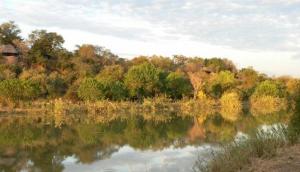 Impondo Safaris on Riverside Ranch