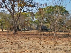 Kazuma Pan Camping