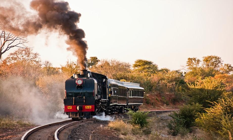The Bushtracks Express