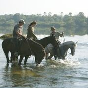 Wild Horizons Horse Riding Safaris