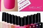 April Shellac Special At Holistic Hands
