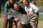 Bally Vaughan Sanctuary & Game Park / Mwanga Lodge