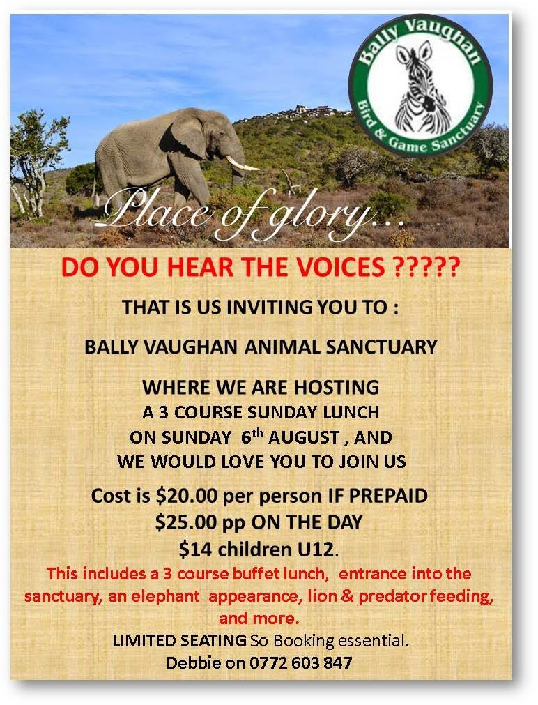 Bally Vaughan - Sunday Lunch 6 August 2017