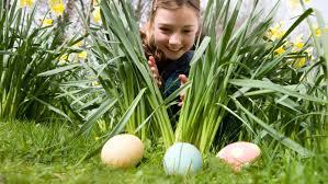 Easter Egg Hunt Fun Day