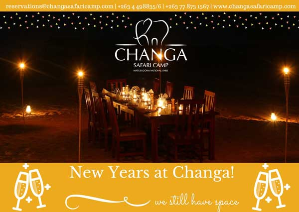 New Year at Changa Safari camp