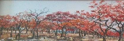 Verandah Gallery 'Art in Spring'