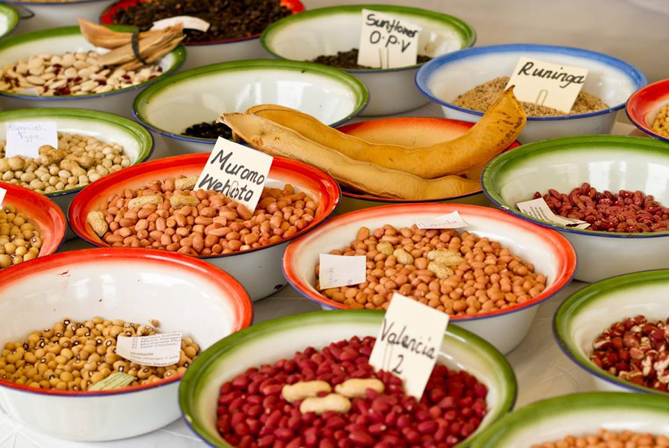 Zimbabwe's one and only Traditional and Organic Food and Seed Festival is back!