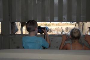 Imvelo Safari Lodges Fantastic Kids-Focused Special