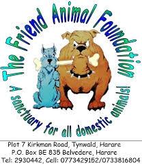 The Friend Animal Foundation