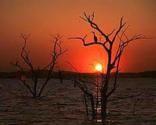 Zimbabwe National Parks