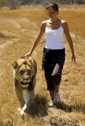 Antelope Park Gweru - Walking with Lions